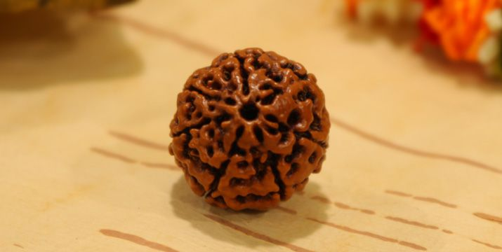 Advantages and Benefits of 7 Mukhi Rudraksha
