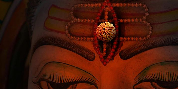 What are the Benefits of Rudraksha